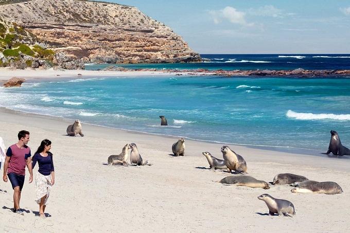 Due settimane in Australia; l'itinerario perfetto