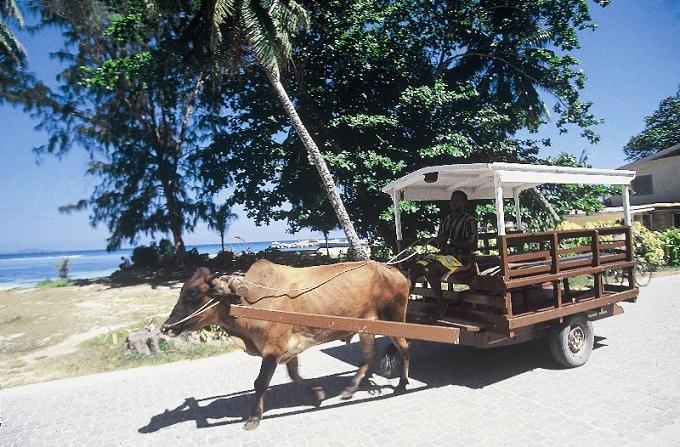 La digue carri buoi Seychelles