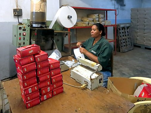 Seychelles cosa vedere Tea Factory