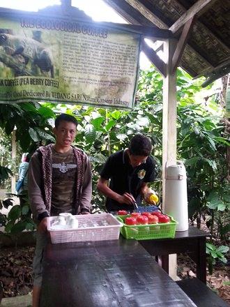Cosa comprare a Bali Caffè