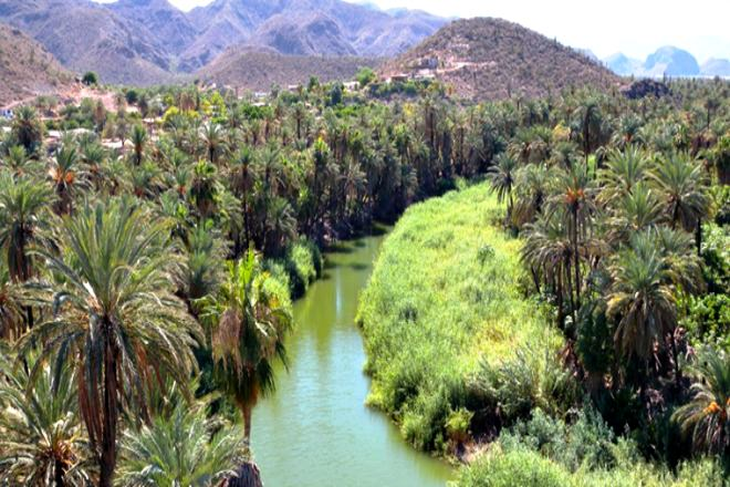 Cosa vedere Baja California Sur